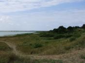 Natuur op Vlieland